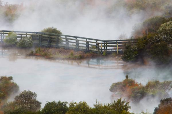 paisagens-renata-avelar